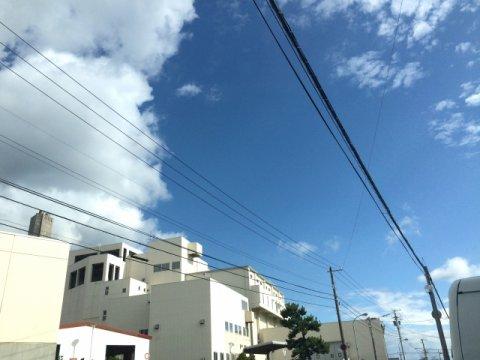 電線が敷地上空